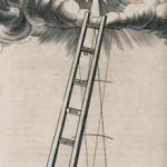 onpage-fluddladder