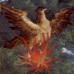 onpage-vuurvogel