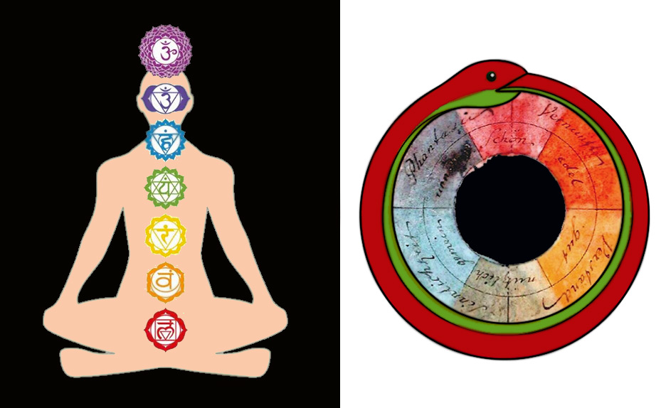 Chakra's and Wheel of Life